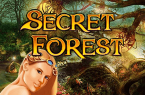 secret forest 15022074850615 image