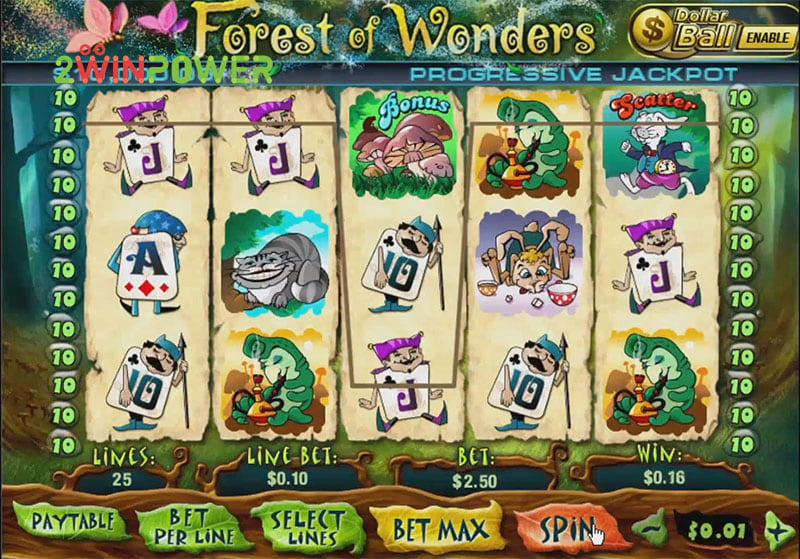 igra pleytek forest of wonders 15436600875769 image