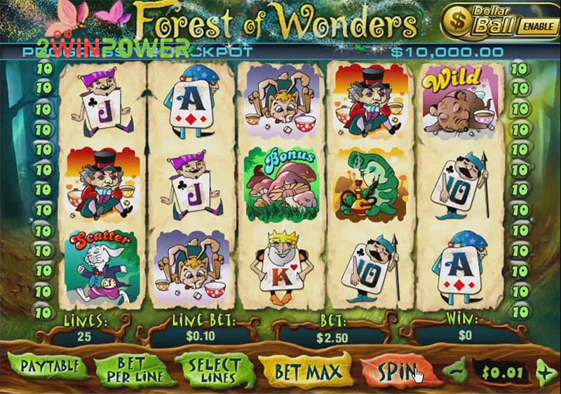 igra pleytek forest of wonders 15436600884351 image