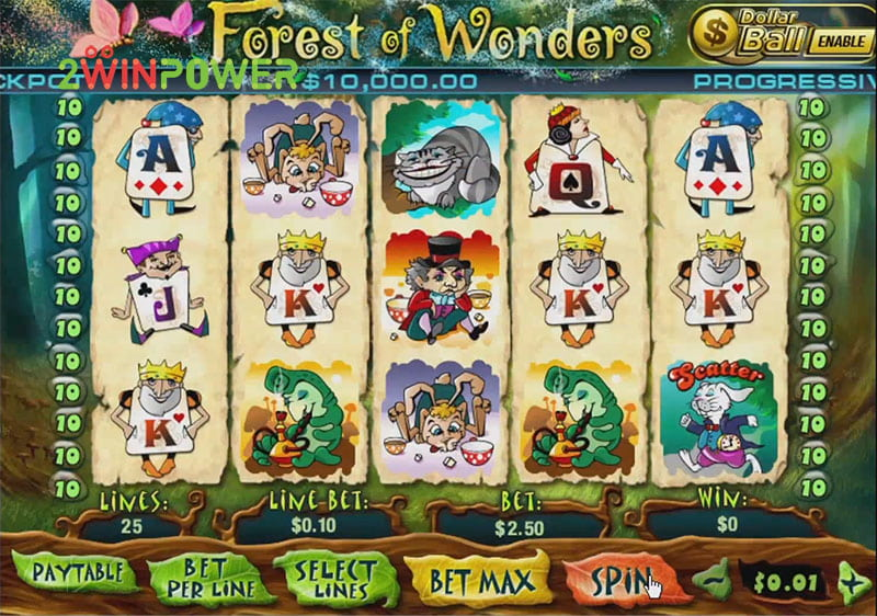 igra pleytek forest of wonders 15436600890468 image