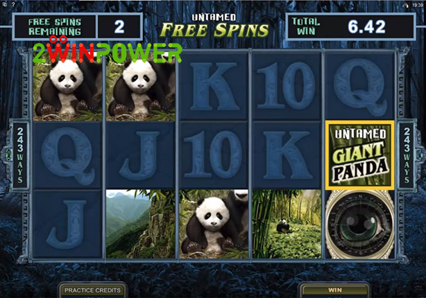 microgaming untamed giant panda 15084849583517 image