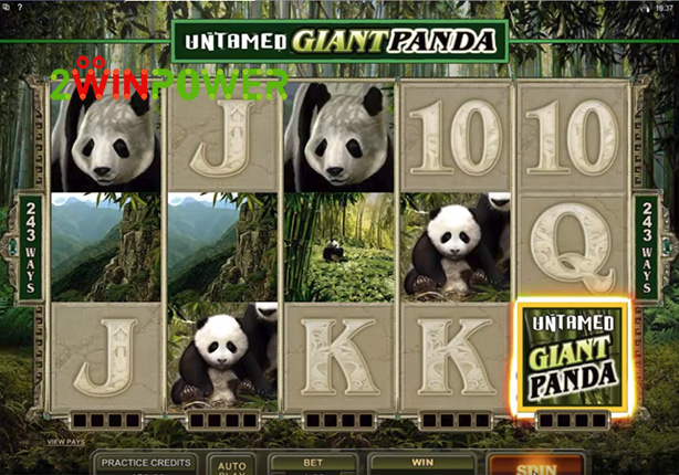 microgaming untamed giant panda 15084849589982 image