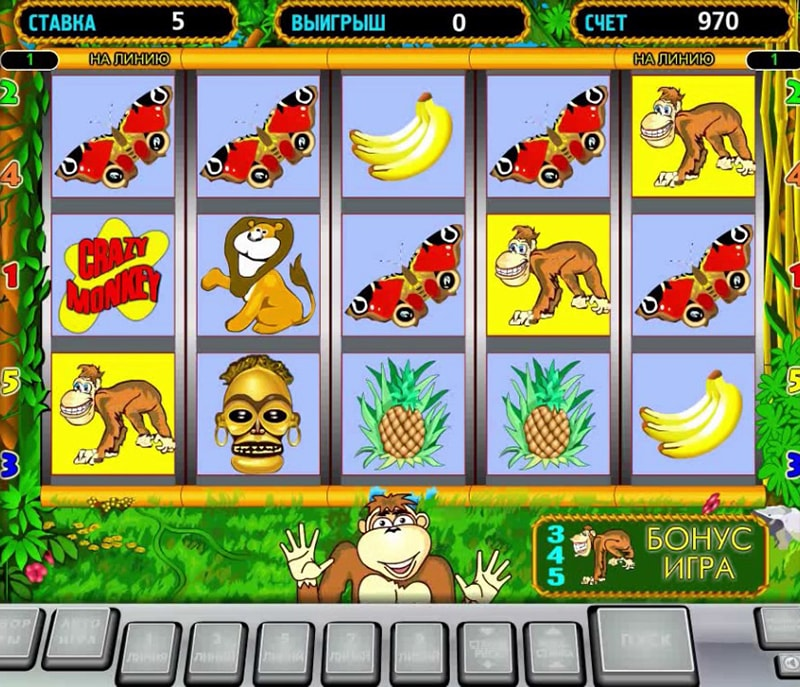 Crazy Monkey slot game by Igrosoft