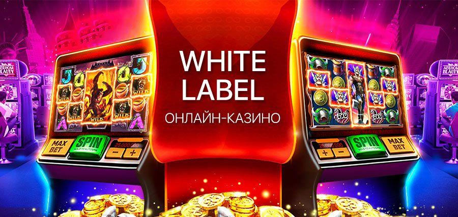 Бизнес интернет казино
