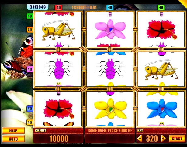 Butterfly online slot from Spin Fun