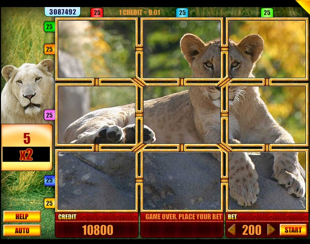 Lion slot game from Spin Fun