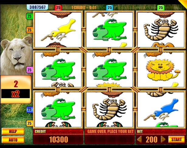 Lion gaming slot from Spin Fun